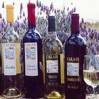 Calais_bottles.jpg